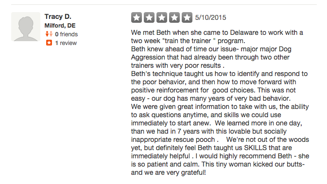 Music City Dog Training Yelp Review #2